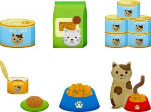 Voedingsadvies voor katten